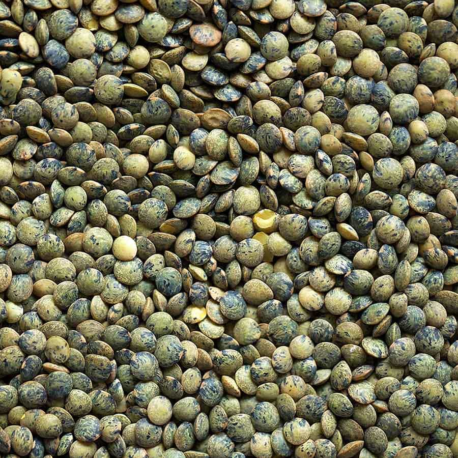 What are lentils?