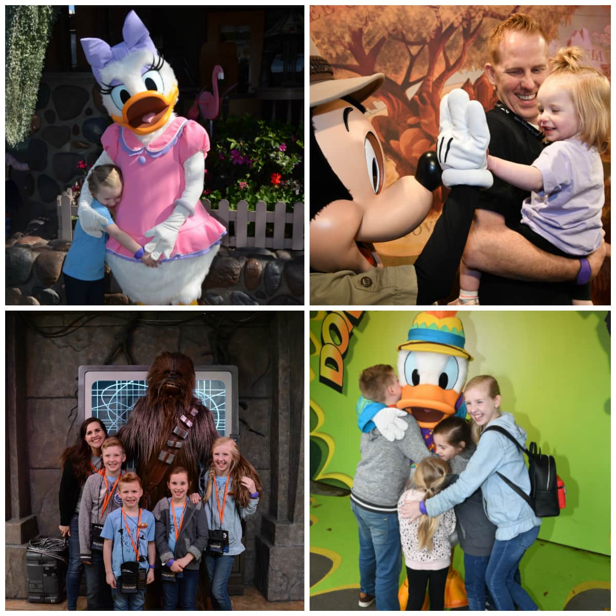 Disney World Character Meet and Greets
