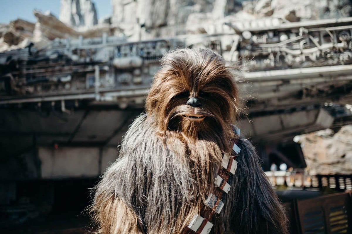 Chewy in front of Smugglers Run