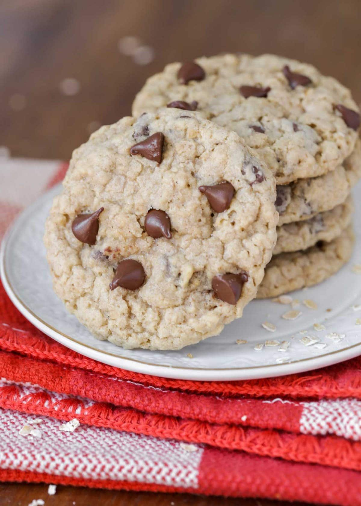 Chewy oatmeal chocolate chip cookies on a white plate
