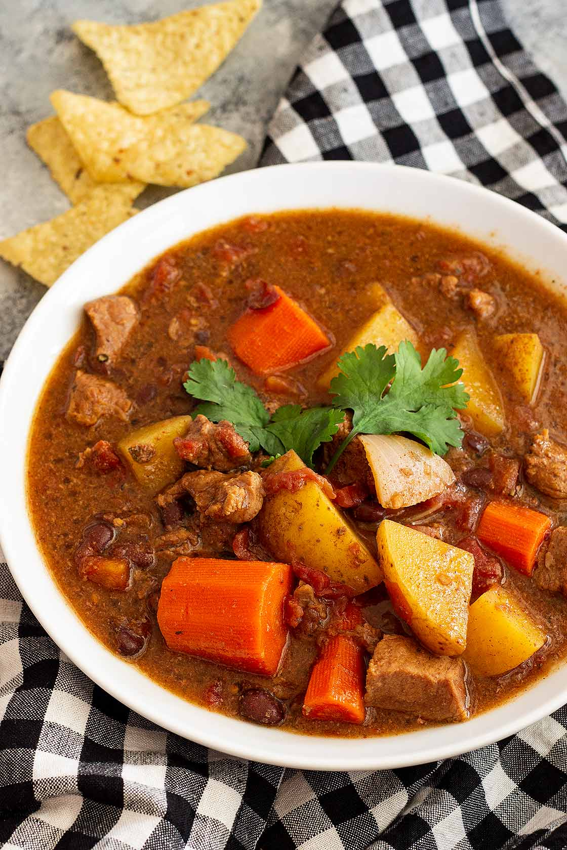 Close up of Mexican Beef Stew in a white bowl