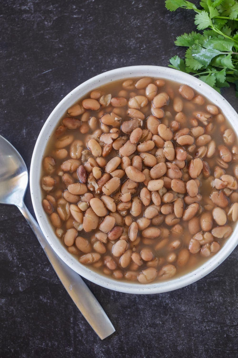 Crock Pot Pinto Beans Recipe Lil Luna