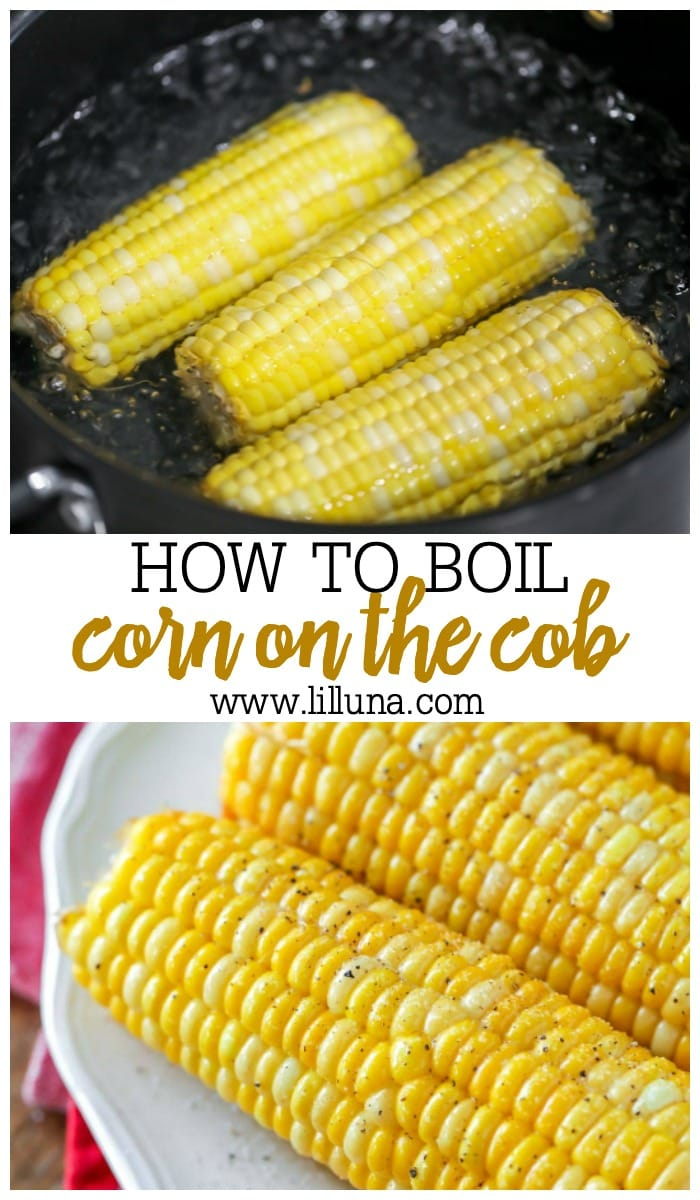 Three cobs of boiled corn on a white plate