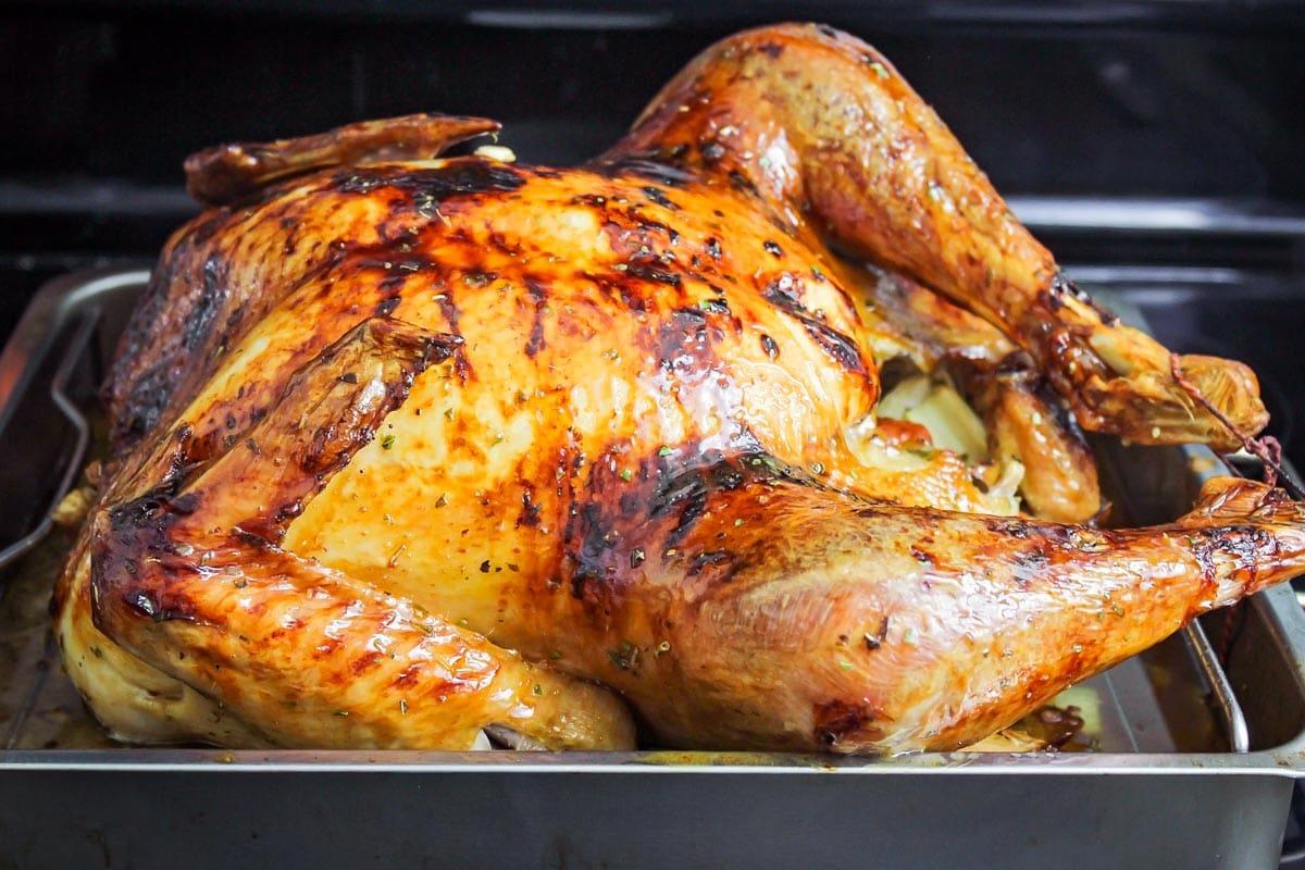 Glazed turkey in a roasting pan